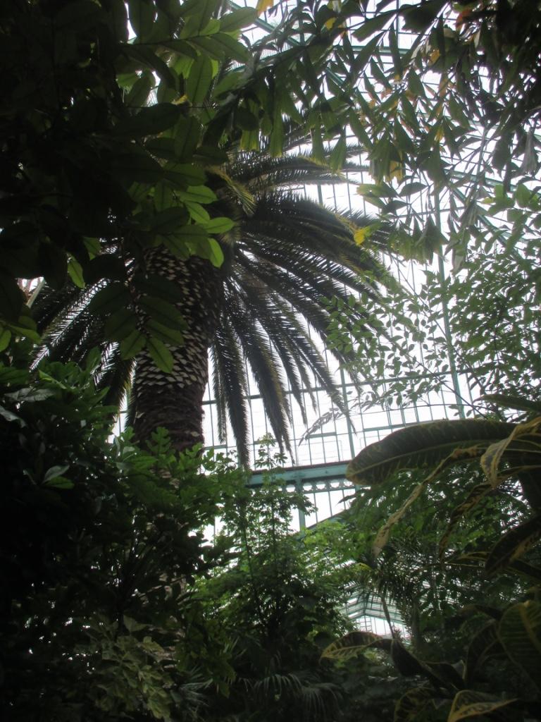 Visiter le jardin des serres d'Auteuil