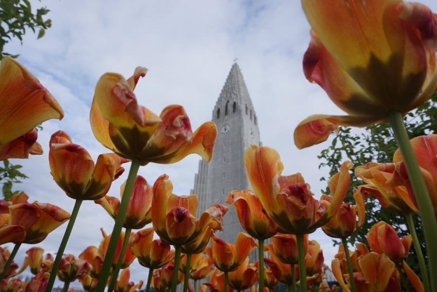 thumb_DSC03706_1024Une journée à Reykjavik