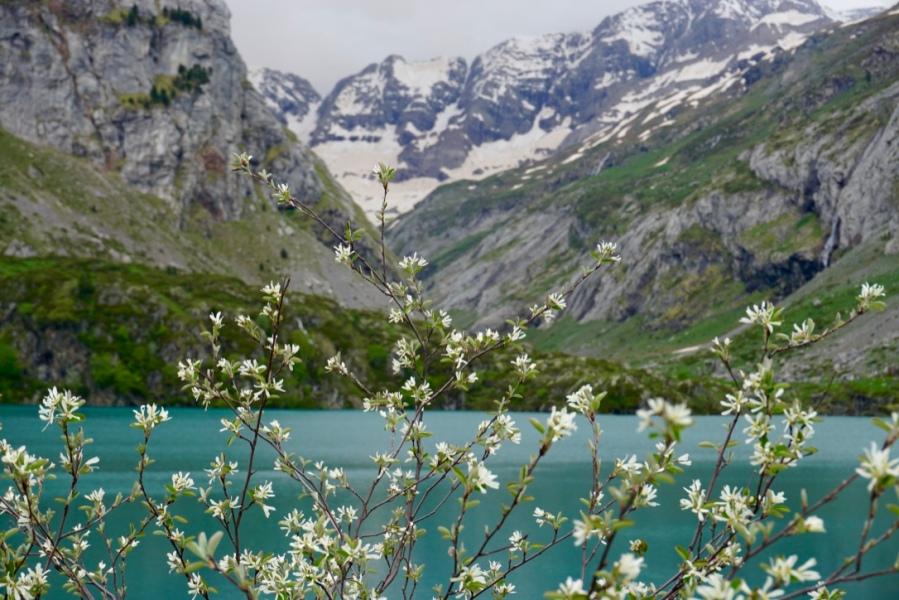 Hautes-Pyrénées - Vallée de Luz